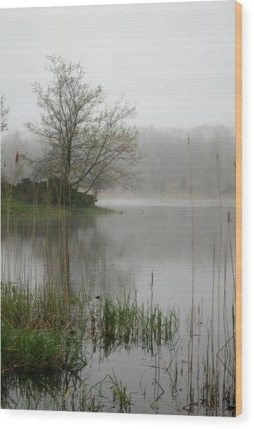 Peaceful Wood Print by Erika Lesnjak-Wenzel