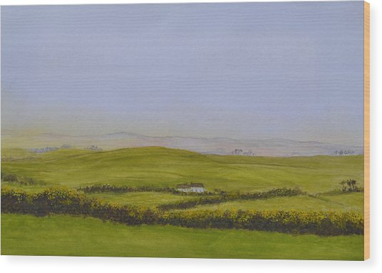 Peaceful Fields Of Ireland Wood Print