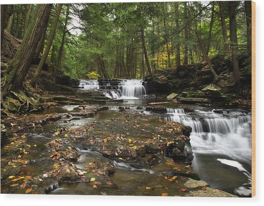 Peaceful Flowing Falls Wood Print