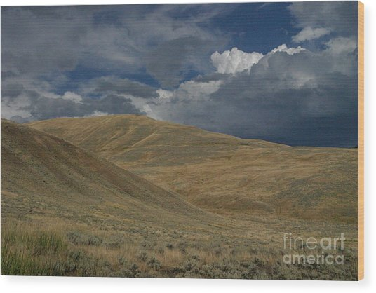 Peaceful Intensity Wood Print by Katie LaSalle-Lowery