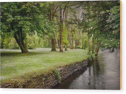 Peaceful Ireland Landscape Wood Print
