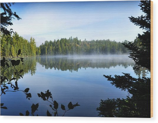 Peaceful Lake Photograph By Erin Clausen