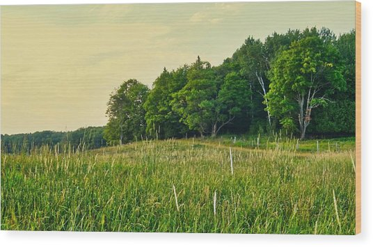 Peaceful Pastures Wood Print