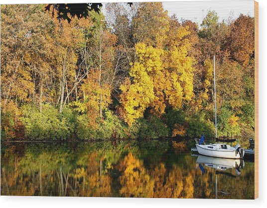 Peaceful Reflections Wood Print by Bruce Bley