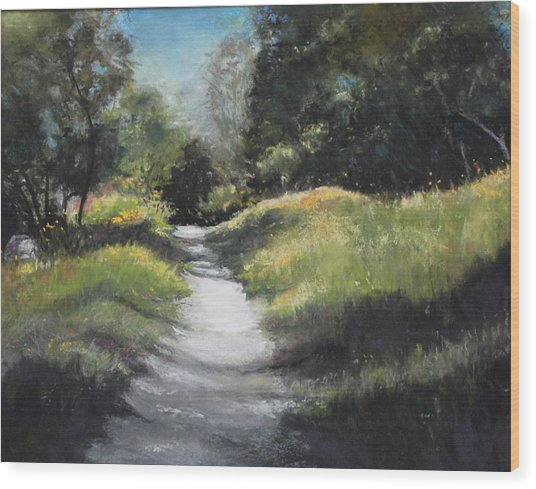 Peaceful Walk In The Foothills Wood Print