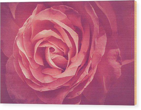 Blooms And Petals Wood Print