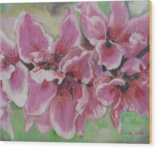 Peach Blossoms Wood Print by Gloria Smith