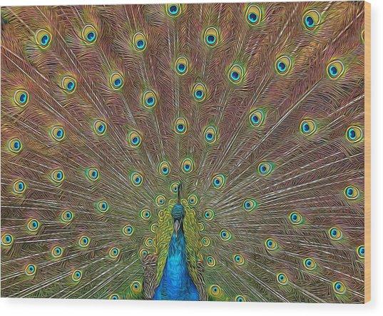 Peacock Fanfare Wood Print