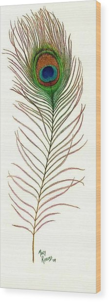 Peacock Feather Wood Print by Mary Rogers