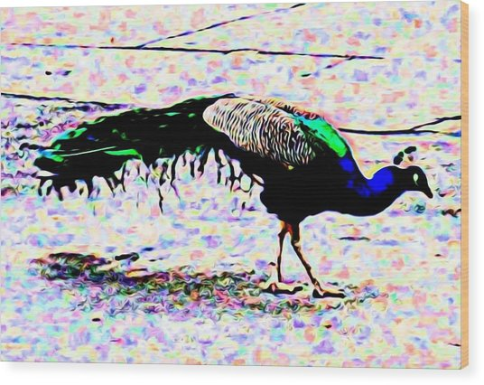 Peacock In Abstract Wood Print