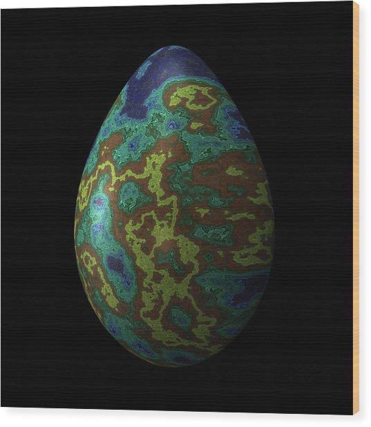 Peacock Iridescent Egg Wood Print