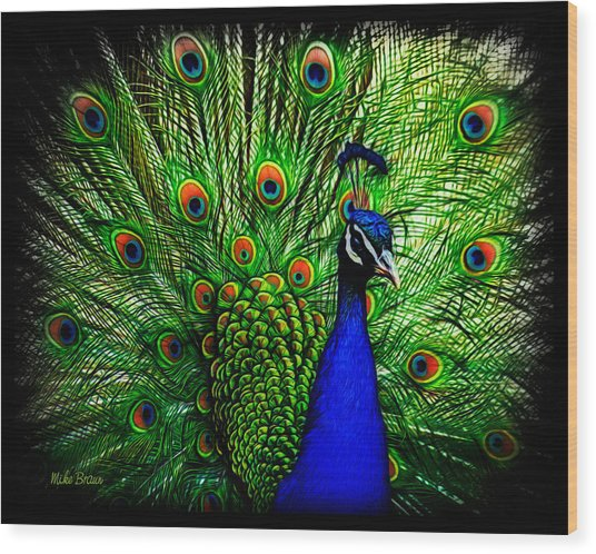 Peacock Paradise Wood Print