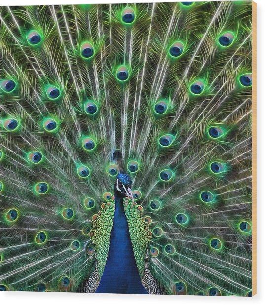 Peacocking Wood Print