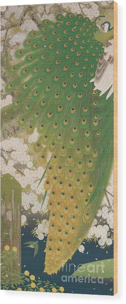Peacocks And Cherry Tree Wood Print