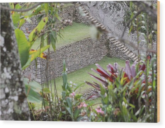 Peeking In At Machu Picchu Wood Print