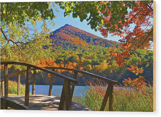 Peaks Of Otter Bridge Wood Print