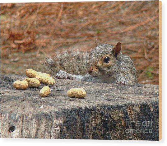 Peanut Surprise Wood Print