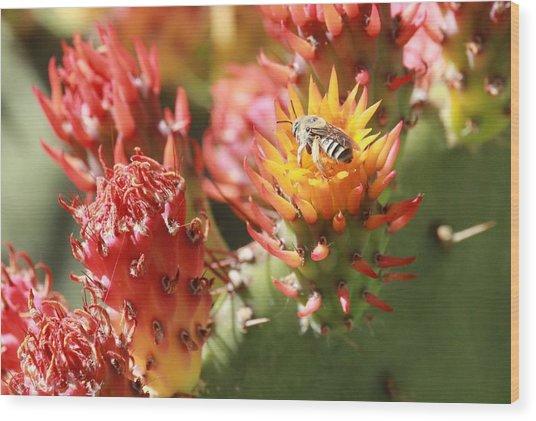 Pear Bee Wood Print