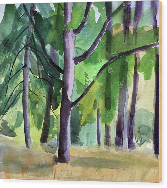 Peavy In September Wood Print by Alexandra Schaefers