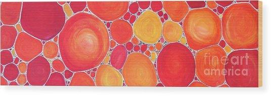 Pebbles At Sunset  Wood Print