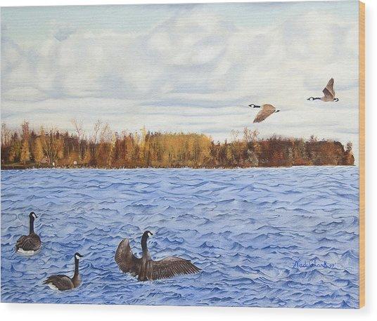Peche Island Canadas Wood Print