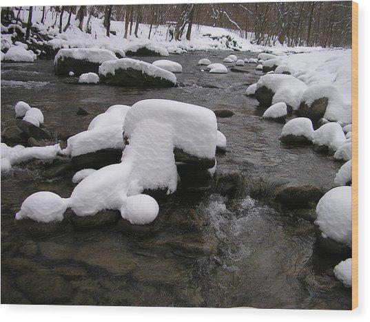 Peekamoose Winter Wood Print by William A Lopez