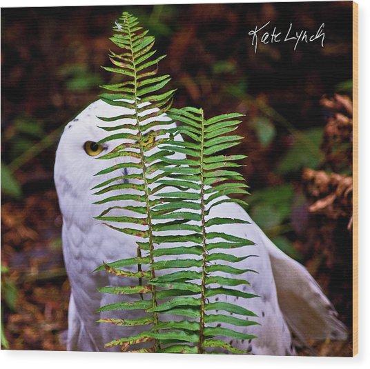 Peeking Wood Print