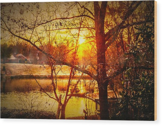 Peeking Through - Lake Sunrise Wood Print by Barry Jones