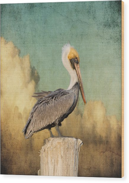 Pelican And Clouds Wood Print