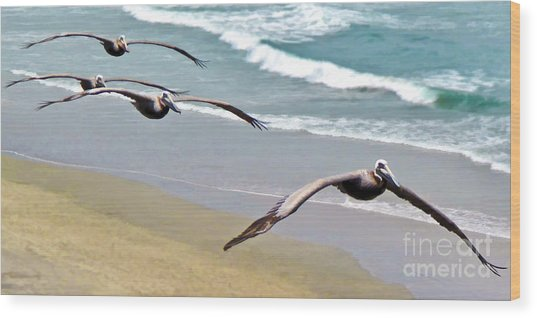 Pelican Fly-by Wood Print