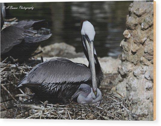 Pelican Hug Wood Print