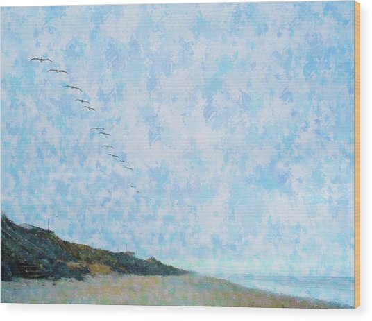 Pelican Mission Wood Print