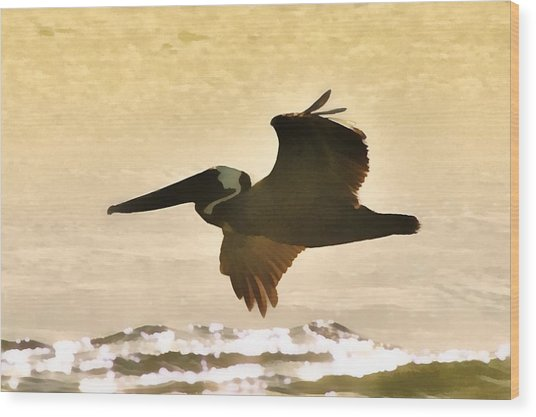 Pelican Patrol Wood Print