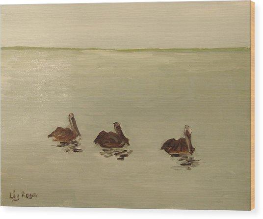 Pelican Study 1 Wood Print by Liz Rose