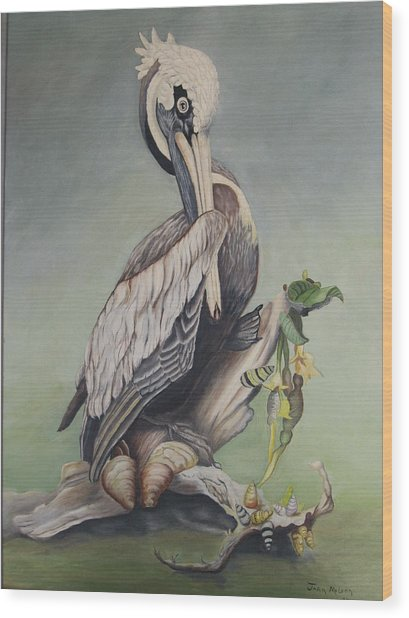 Pelican With Shells Wood Print by Joan Taylor-Sullivant