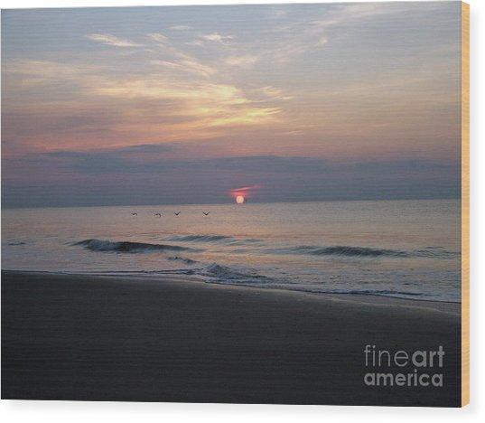 Pelicans At Sunrise On Tybee  Wood Print
