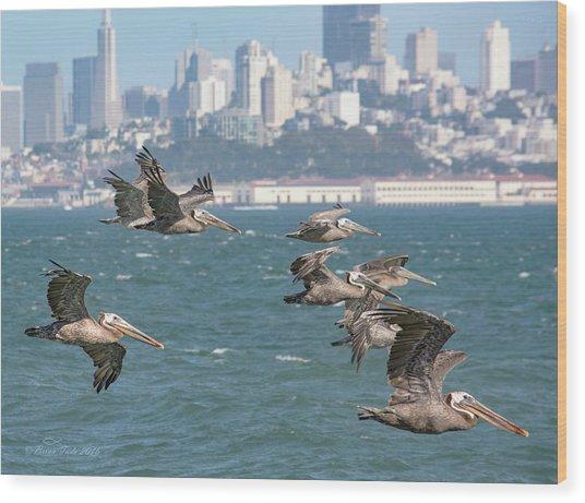 Pelicans Over San Francisco Bay Wood Print