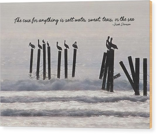 Pelicans Perched Quote Wood Print by JAMART Photography
