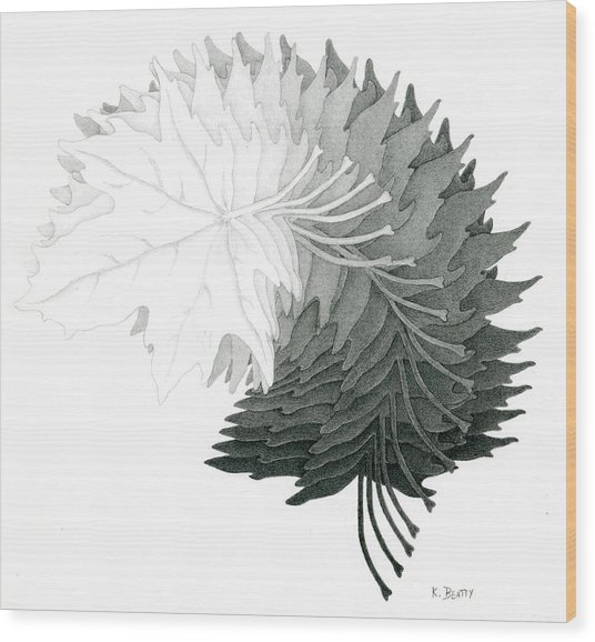Pencil Drawing Of Maple Leaves Wood Print
