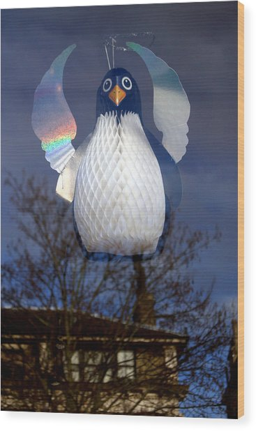 Penguin Angel Wood Print by Jez C Self