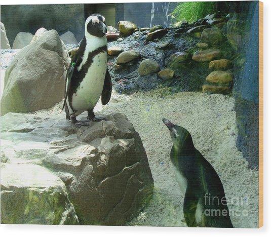 Penguin Friends Wood Print