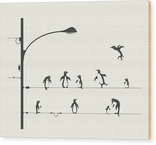Penguins On A Wire Wood Print