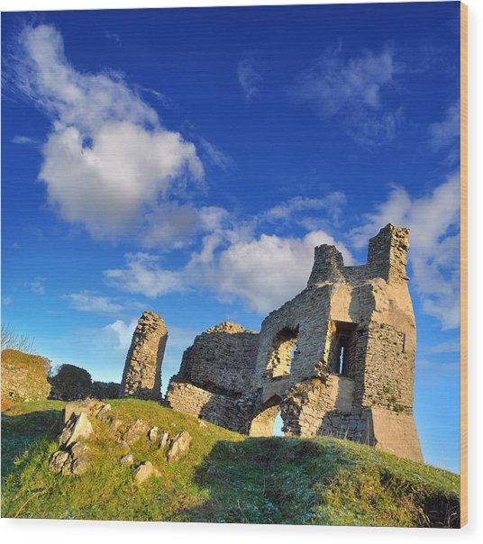 Pennard Castle Wood Print