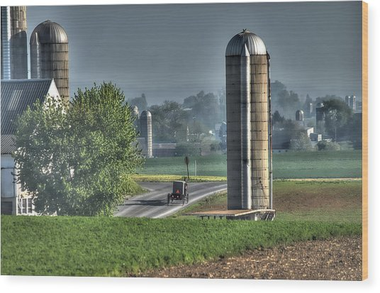 Pennsylvania - Amish Country  Wood Print