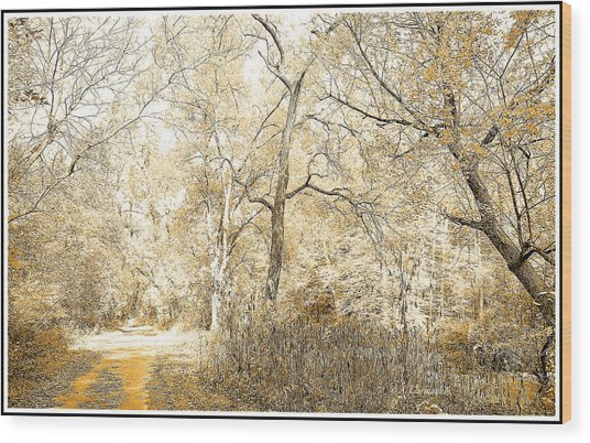 Pennsylvania Autumn Woods Wood Print