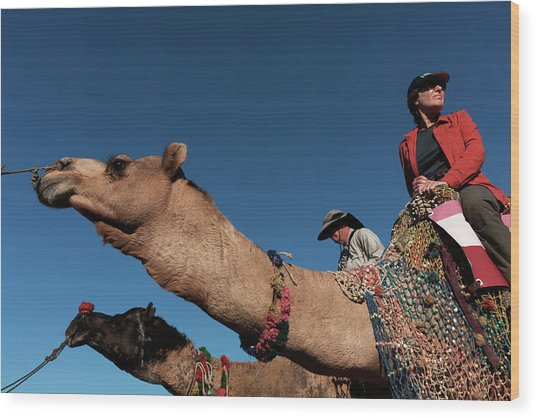 People On The Camel, Pushkar Wood Print