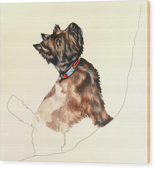 Pepper Wood Print by Carol Meckling