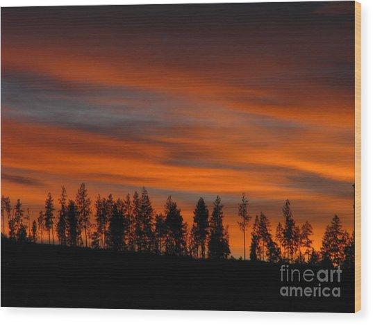 Perfect Evening Wood Print