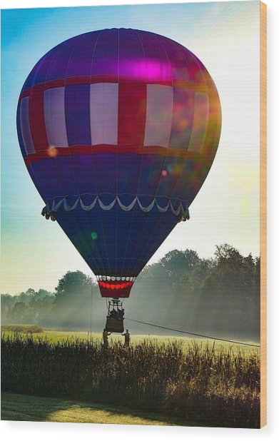 Perfect Landing Wood Print