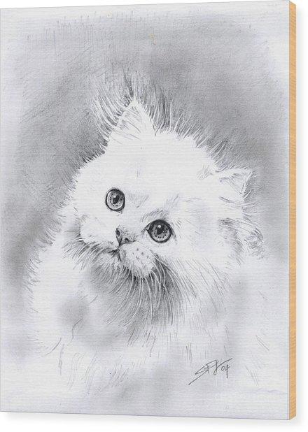 Persian Cat Wood Print